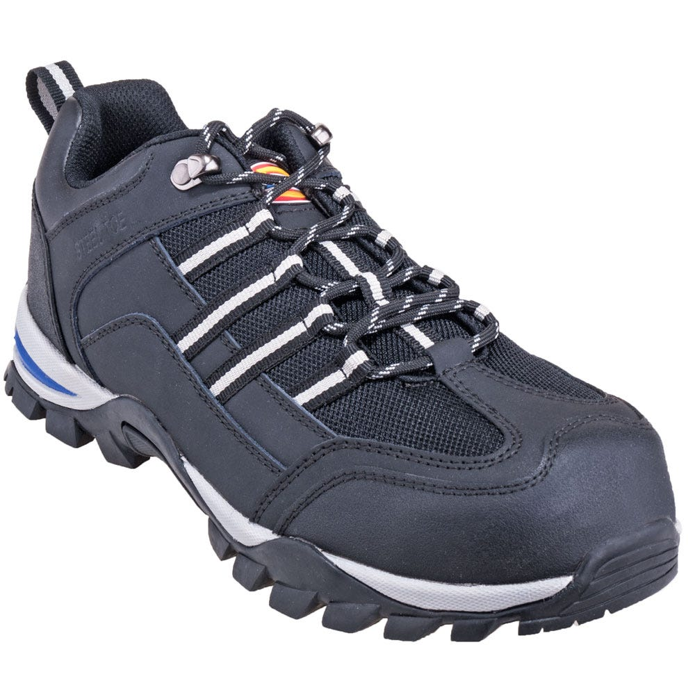 Dickies Boots Men's Shoes DW1627