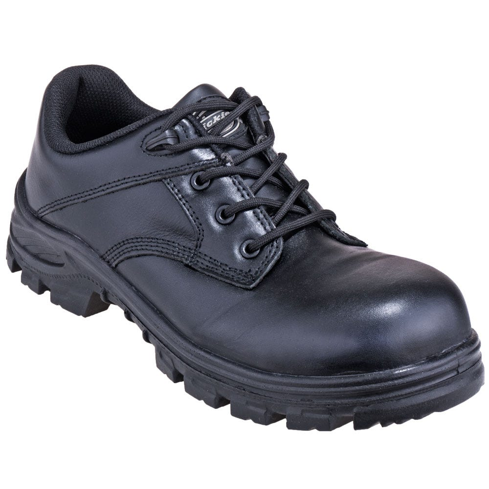 Dickies Boots Men's Shoes DW2335